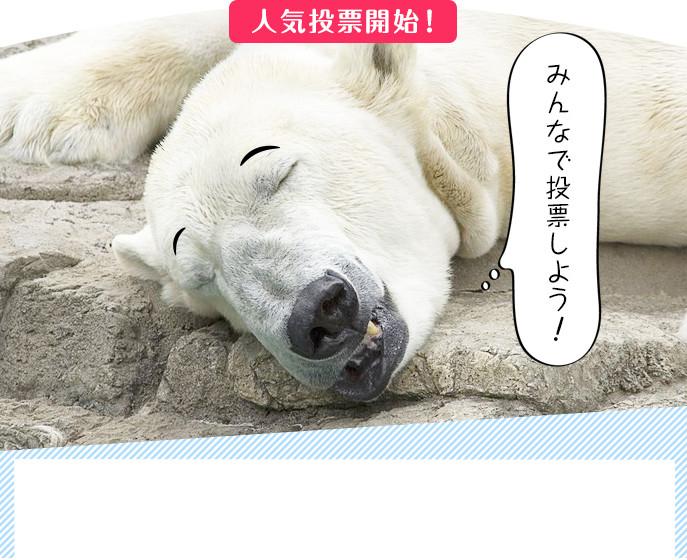 地球温暖化防止啓発 動画コンテスト投票 イメージ